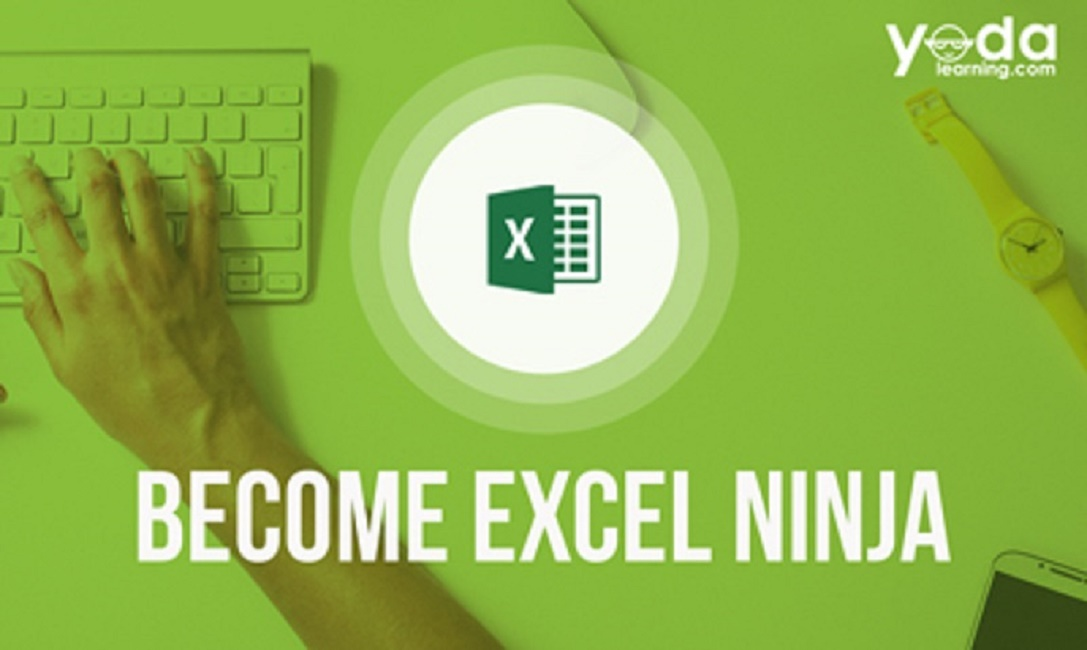 Excel Ninja Course